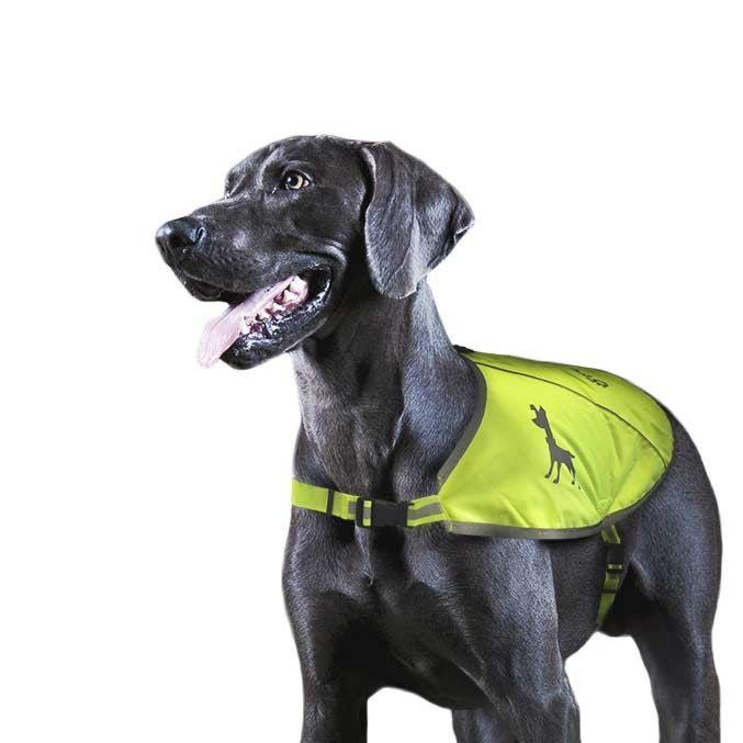Жилет для собак Tractive Visibility Vest с карманом для GPS-трекера