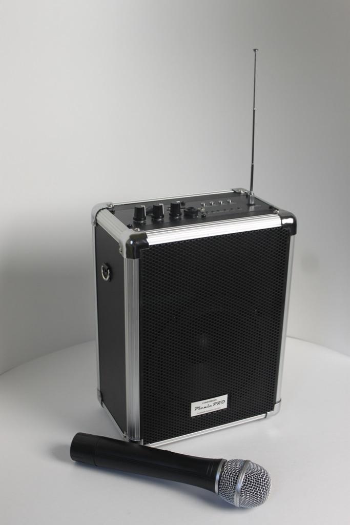 Блютус акустическая система для караоке «Picnic Pro»