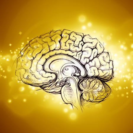 Ученые использовали неинвазивный метод электрической стимуляции глубоких отделов головного мозга