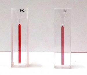 При добавлении вирусного ДНК, цвет раствора с наночастицами из ярко-красного становится бледно-фиолетовым