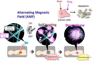 В результате применения Smart Thermo проводится комбинированная терапия, которая непосредственно атакует раковую опухоль.