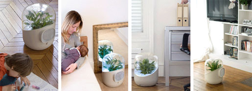 Andrea Plant-based Air Purifier