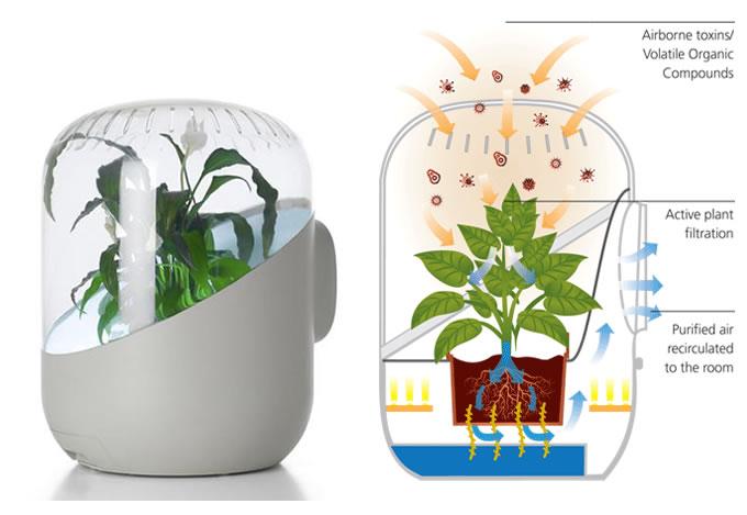 Эко-очиститель воздуха Andrea Plant-based Air Purifier