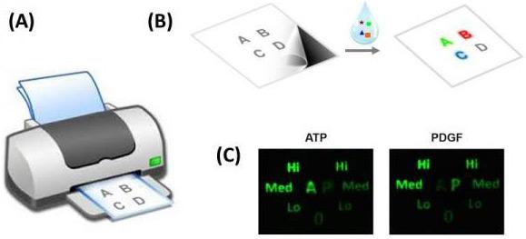 paper-diagnostics