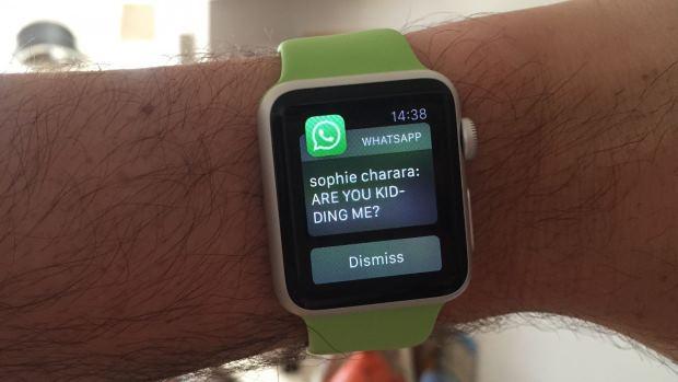 whatsapp-1430414831-2omD-full-width-inline